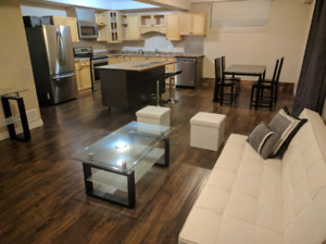 luxury 1 bdrm suite near downtown for rent