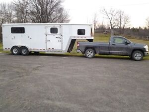 Horse trailering to and from Toronto