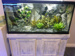 CUSTOM AQUARIUMS FOR SALE
