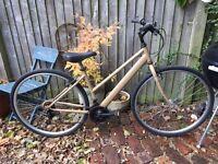 Student touring city bike 18speed
