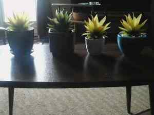 4 pc. new plastic type plants in ceramic containers.  10.00