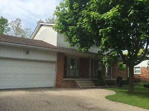2 Storey on 1/3 acre, in South Windsor