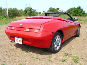 1998 Alfa Romeo Spider 916 Lusso THE BEST ONE THERE IS