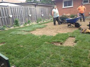 lawn  man  installation London Ontario image 10