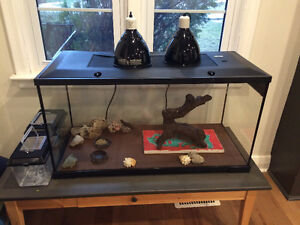 40 Gallon reptile aquarium