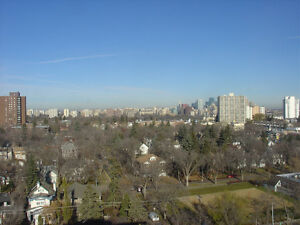 BRIGHT LARGE UNIVERSITY OF ALBERTA 2 BED, 13th flr PENTHOUS APT