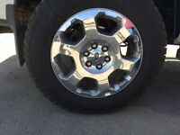 I need 20in rim for 2010 f150