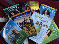 Weeds DVDs