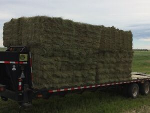 SMALL SQUARE BALES Bundled into Groups of 21