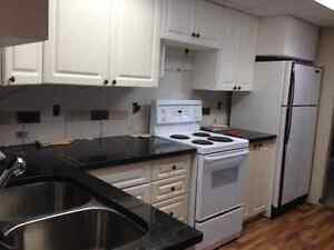 Beautifully renovated lower one bedroom suite in Spruce Cliff