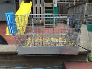 Small animal cages.