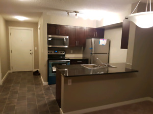 3 bed 2 bath Apartment for rent(march 1)