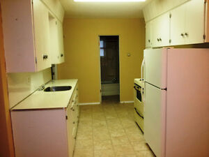 One bedroom apartment in Maple Creek
