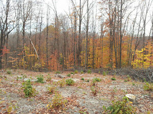 5 acres for sale in Val-des-Monts Gatineau Ottawa / Gatineau Area image 5