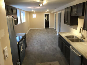 Brand New apartment for rent in Orleans!