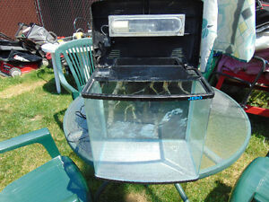1 small Aquarium 16x11x10 with cover and light .for guppies or