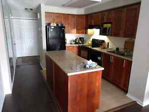 Condo/2 Bed/BaycrestGardens (next to MTO on Walkley)