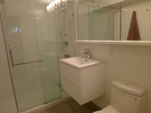 Gorgeous Newly Renovated Furnished Bachelor - 260SF Yonge/Finch London Ontario image 1