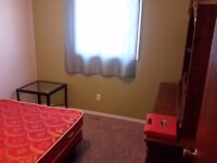 Room for rent in Brooks.