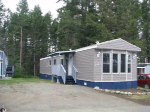 winter work to make profit on a mobile home