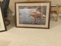2 COUGAR  PRINTS  PAINTINGS - FRAMED