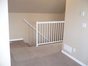 Beautiful 2bdrm close to downtown! Some pets welcome. Regina Regina Area image 3