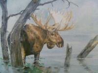 """Bull Moose #2 - 14"""" x 20"""" ORIGINAL ART"""