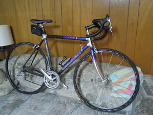giant cadex early 1990 road 53cm