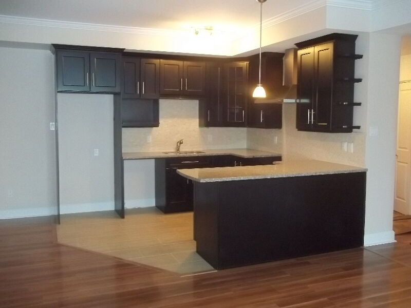 Kitchen Cabinets At Wholesale Prices Cabinets