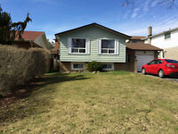 Immaculate All Inclusive Raised One Bdrm Bsmt Apt in N. Oshawa