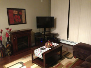 Beautifully 2 bedroom Condo - Furnished or Unfurnished