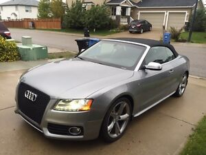 "2010 Audi S5 Convertible ""looks like new"""