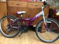 Girls Mountain Bike - Coyote Crystal