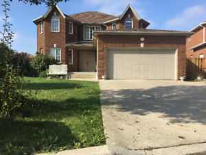 South Windsor Beautiful 2 Story House FOR RENT