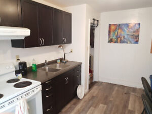 ROOM FOR RENT MAY-AUG - $490/mo - DOWNTOWN (Barrie St)
