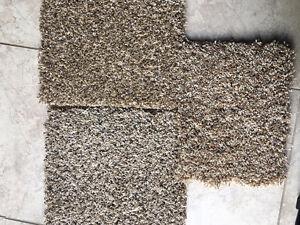 Inst. Incld $2.39 (Lam.)- Carpet $1.89 - vinyl plank $2.99 Stratford Kitchener Area image 7