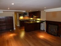 Spacious Bachelor in Golden Triangle Avail Aug 15th