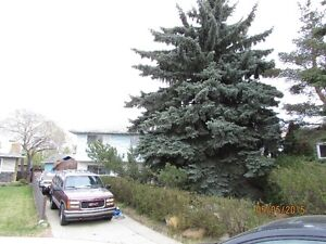 I have a room by the week or month Sherwood Park furnished