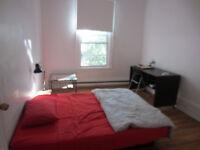 MILE-END chambre à louer