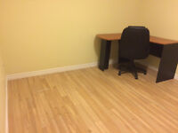 Basement Room Available for Rent