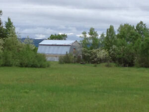 74.91 Acres of Freehold Agricultural Land in the Humber Valley!