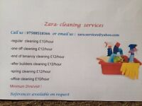 Cleaning,ironing,carpet cleaning services PO1 to PO20