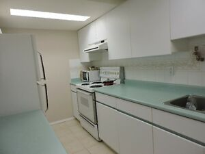 $1050 / 1br - 1100ft2 - one bedroom basement over 1100 sq feet i