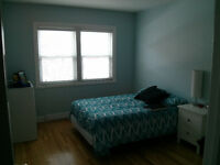 Chambres à louer 1er janvier Plateau-Rooms for rent january 1st