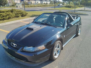 2003 Ford Mustang GT Convertible V8