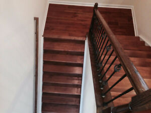 Hardwood Stairs And Railings