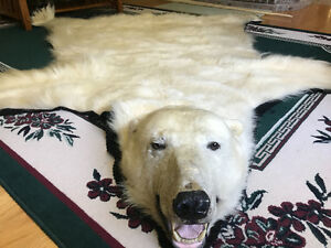 POLAR BEAR RUG FOR SALE