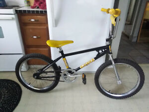 Old School All Pro BMX(would Like To Sell To A Collector)