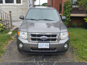2010 Ford Escape XLT FWD 6 Cylinder Automatic