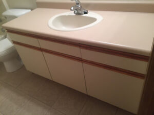 Kitchen And Bathroom Cabinets, Countertops, Sinks, Toilet